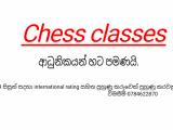 Chess classes for begginers