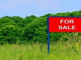 Land for Sale in Katharagama