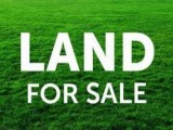 Land for Sale at Wadduwa