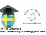 Educational Consultants