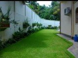 Garden service and landscaping