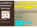 Consultancy Assistance Services