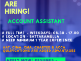 ACCOUNT ASSISTANT FOR OUR AUDIT FIRM