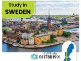 Study & family settle in Sweden
