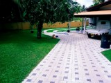 SSP Interlock Paving