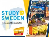 Study Family Settle in Sweden