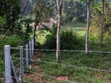 Land for sale in mawanella danagama