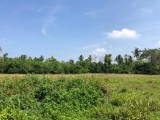 Land for Sale in Katuwangoda